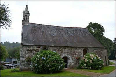 Pardon Saint Remy Pluméliau 2016 (2)
