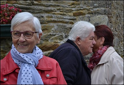 Pardon Saint Remy Pluméliau 2016 (23)